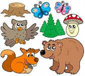 Forest Animals Collection 3 - Vektor-Illustration.