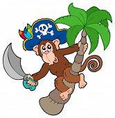 Macaco de pirata com palmeira - ilustração vetorial.
