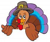 Lurking cartoon turkey in hat - vector illustration.