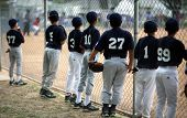 Baseball Players Watching Baseball Game Along Fence With High DOF