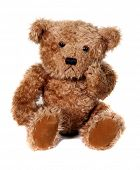 Adorable Brown Teddy Bear