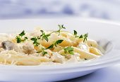 image of pene  - Pasta Penne with Chicken and Mushroom under Parmesan Cheese - JPG