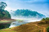 Beautiful Landscape With Wild Forest And River With Fog In India. Periyar National Park, Kerala, Ind poster