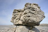 stock photo of errat  - Limestone Glacial Erratic Boulder Poulsallagh The Burren - JPG