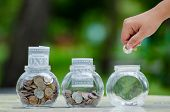 Coin Tree Glass Jar Plant Growing From Coins Outside The Glass Jar Money Saving And Investment Finan poster