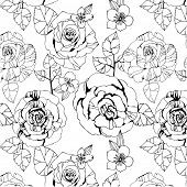 seamless monochrome pattern with roses