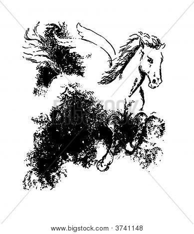 Pin Narcissus Greek Mythology Symbol on Pinterest