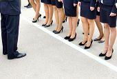 female legs in a rank