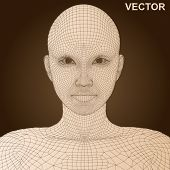 Vector eps concept or conceptual 3D wireframe human female head isolated on brown background as metaphor for technology,cyborg,digital,virtual,avatar,science,fiction, future,mesh,vintage or abstract