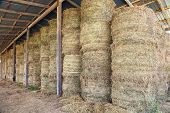 stock photo of haystacks  - Haystacks in barn at the agricultural farm - JPG