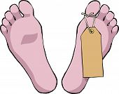 pic of mortuary  - Feet with a tag on a white background vector - JPG