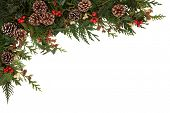 Christmas border of holly, ivy, mistletoe and cedar cypress leaf sprigs with pine cones over white background.