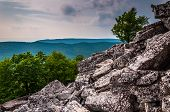 View Of The Appalachians From The Boulder-covered Slopes Of Duncan Knob, George Washington National