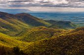 View Of The Shenandoah Valley And Foothills Of The Blue Ridge From Blackrock Summit, In Shenandoah N