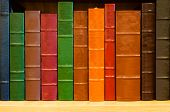 stock photo of leather-bound  - A row of colorful spines of leather bound books sitting on a shelf of a bookcase fills the frame - JPG