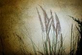 Grass flowers in retro style.