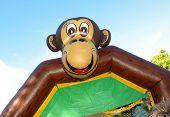 Monkeying Around...