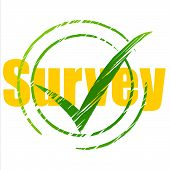 Tick Survey Represents Yes Checkmark And Assessing