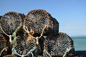 Fishing lobster pots.