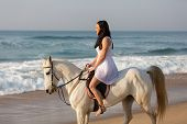 gorgeous girl in white dress riding a horse on the beach in morning