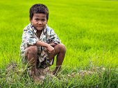 Portrait of Cambodian Boy in Front of Rice Field, Siem Reap, Cambodia