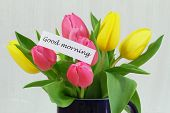 Good morning card with colorful tulips
