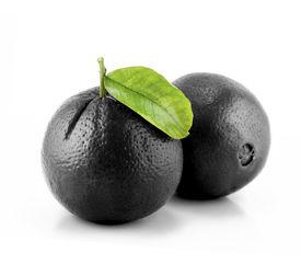 stock photo of queer  - Black Orange - JPG