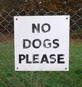 stock photo of polite  - Polite No Dogs Please Sign - JPG
