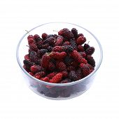 Mulberry Fruit In Glass Bowl Isolated