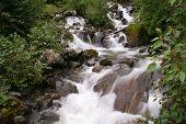 Moutain Stream