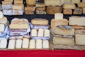 Cheese on Santanyi market