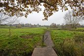 Footpath over a stream along a meadow at fall