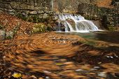 Autumn Leaves In A Waterfall
