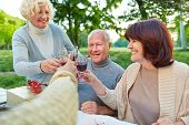 Happy senior friends cheering with glass of red wine at birthday party