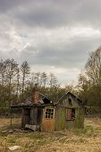 Ruined cabin in the swamps