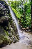 picture of tong  - Amazing of Bua Tong Waterfall in Chiang Mai - JPG