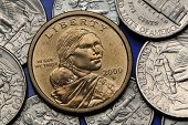 Coins of USA. Sacagawea with her child depicted on the US Sacagawea dollar.