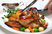 homemade roast turkey, thanksgiving christmas dinner serving