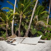 picture of boracay  - Wooden boat on tropical beach with coconut palm trees Philippines Boracay - JPG