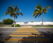 image of pedestrian crossing  - Pedestrian crossing on tropical street road. Outdoors