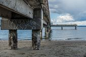 foto of tide  - Pier pilings encrusted with barnacles are revealed at low tide - JPG