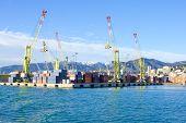 pic of genova  - Various cranes in the port of Genoa in Liguria Italy - JPG