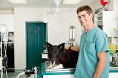image of veterinary clinic  - A small animal clinic with a dog on the surgery prep table - JPG