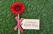 picture of gerbera daisy  - Earth Day April 22 Concept with red gerbera daisy flower on grass with greeting tag - JPG