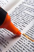 Marker and word drink in Spanish English dictionary