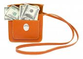 Dollar Bills In Handbag