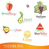 Vector icons set - Fruits