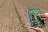 Smart Agriculture. Farmer Using Tablet Corn Planting. Modern Agriculture Concept. poster