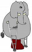 Elephant On Crutches