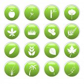 Vector - Green environment 3D glassy icons with nature theme